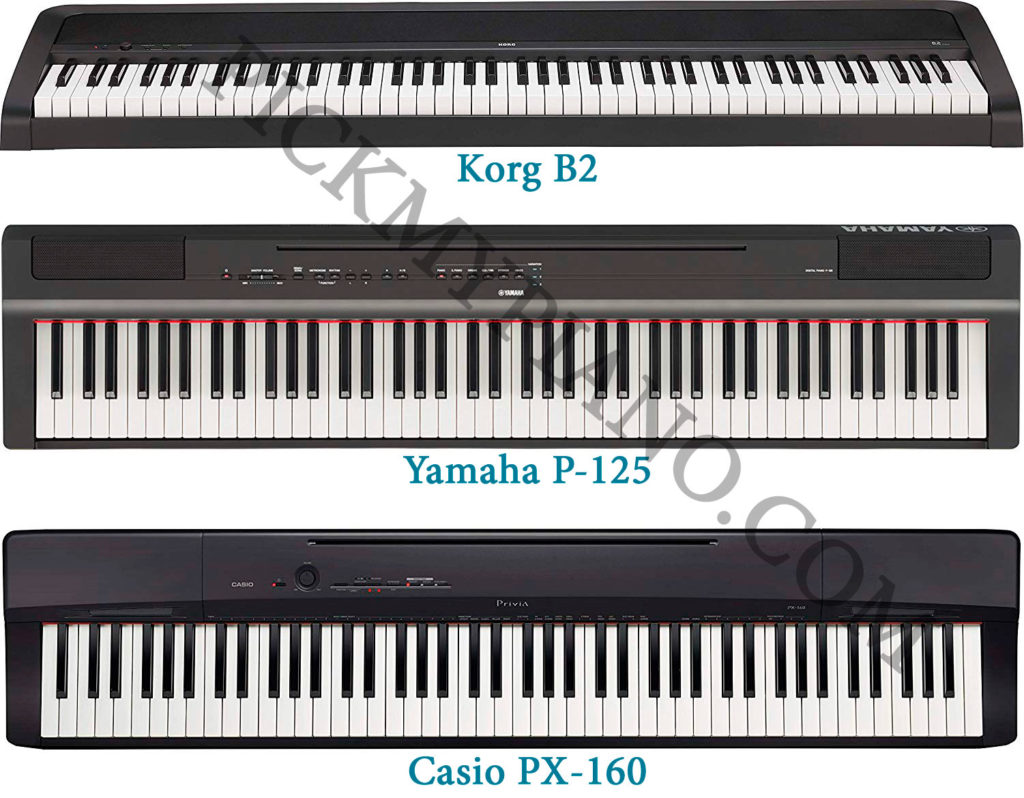 Korg B2 / Yamaha P125 / Casio PX160